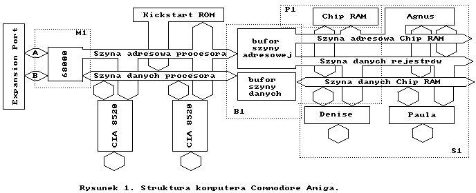 struktura Amigi