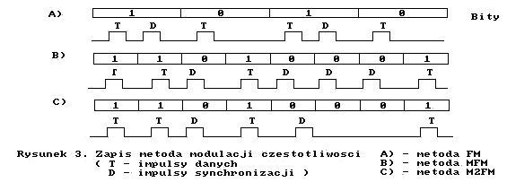 rys3.jpg