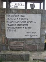 lipowiec2.jpg