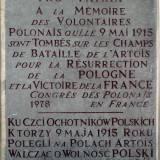 Tablica ku czci ochotników polskich poległych 9 maja 1915 r.