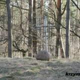 Las koło Cieksyna. Mogiła zbiorowa.