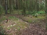 3620_komorowo_20080522.jpg