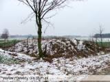 351_niedarzyn_20051203.jpg