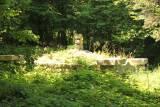 Ożenna. Cmentarz wojenny nr 1.