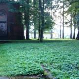 Schody i zarośnięta droga do pomnika.