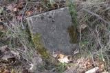 p4110038.jpg