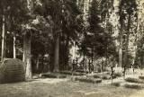 allenstein-russenfriedhof.jpg