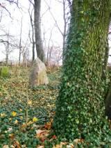 Pozorty, kwatera wojenna na dawnym cmentarzu wiejskim