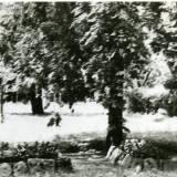 gross_sakrau_kriegerfriedhof.jpg