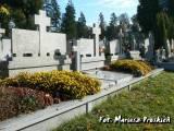 Mogiła zbiorowa żołnierzy WP poległych i zmarłych 1918-1920.