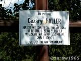 c.haller20.zur003.jpg