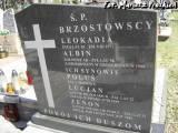 Grób rodziny Brzostowskich.