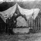 warweiden-1920.jpg